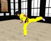 E.T.D. JK 6 Karate Kicks