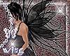 wings - black