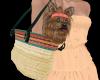 Shay Summer Puppy Bag