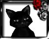 SHOULDER CAT F