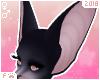 Ⓕ Purr | Ears