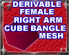 Fem R Arm Cube Bngl Mesh