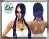 ~CAT~Purple/Blue Becci