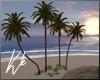 [kk] Villa Palm Trees