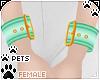 [Pets] Wristcuff   aqua