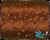 Fall Fallen leaves