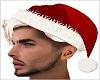 Santa Hat n Hair