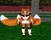Fox Ninja Feet F V2
