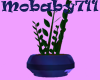 Plant in Blue Pot