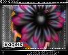 :B) Syaoran flower
