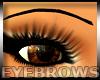 Eyebrows Tattooed