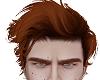 vk. Mephist ginger