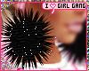 #GG PomPom| Black