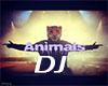 Martin Garrix - Animals