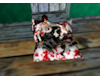 Marbled BeanBag Chair