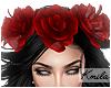 |K Catrina Crown V1 R