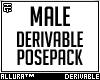 Derivable Posepack