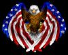 :USA Eagle: {RH}