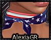 [A] USA Scarf