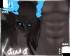 | Shiki | Scales M