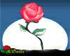 Dancing Rose 2