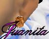*[JE]* brownish silk