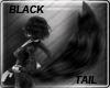 Black Furry Tail