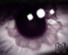 STEELO Devil Eyes Unisex