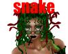 coiff green snake