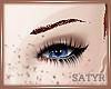 Chestnut Eyebrows