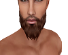 eSexy Bearde