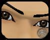 brown male eyes
