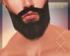 × Fall Beard