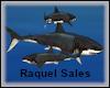 RS: Shark x8 - Furniture