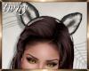 Little Red Wolf Ears