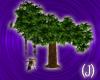 (J)romance tree II