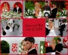 L&M Wedding