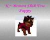 K~ ShihTzu puppy1