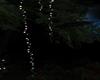 YELLOW LIGHT 2 (KL)