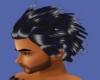 hair van