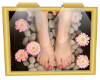 Pedicure Wall Picture