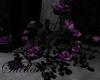 S= roses bush Balcony
