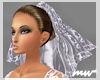 !Wedding veil p-lavender
