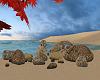 Beach Rocks~