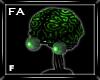 (FA)BrainHeadF Grn