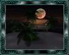 """dream night"" island"