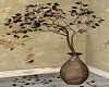 Somewhere / Plant 1