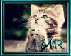 cat voicebox