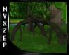 Rainforest Strange Tree