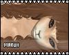 [Mar] Teddy Hair v4
